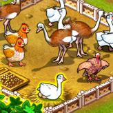 Скриншот игры Ферма Джейн